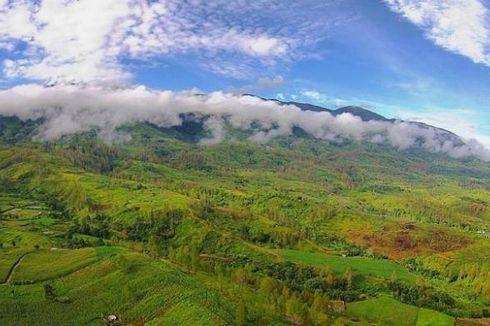 Jaga Kelestarian, Perusak Hutan di Gayo Lues Bakal Didenda Rp 10 Juta