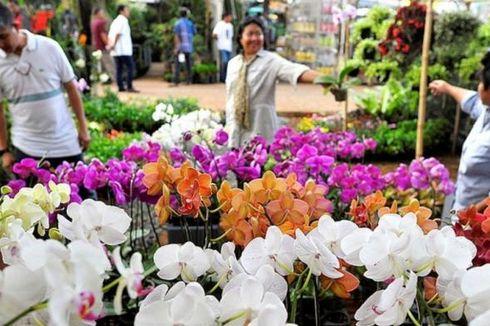 Besok, Pameran Flora dan Fauna Digelar di Lapangan Banteng