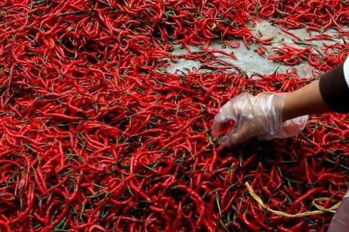 Kementan Jaga Stabilitas Pasokan Cabai dan Bawang Merah