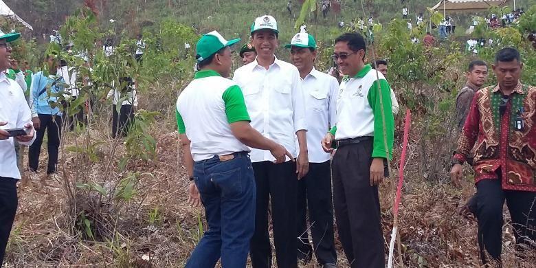 Presiden Joko Widodo dan Direktur Utama Perum Perhutani Mustoha Iskandar, saat memperingati Hari Menanam Pohon Indonesia,  di Taman Hutan Rakyat, Kalimantan Selatan, Kamis (27/11/2015).