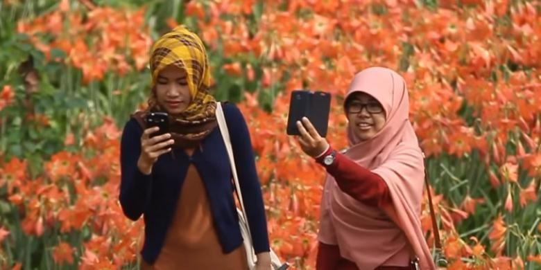 Warga antusias berfoto di hamparan kebun bunga Amaryllis atau lily di Pathuk, Gunung Kidul yang hanya mekar setahun sekali.