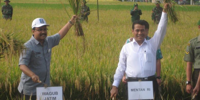 Begini Cara Pemerintah Wujudkan Indonesia Menjadi Lumbang Pangan Dunia