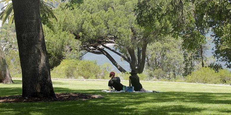 Dua sejoli yang menjalin kasih tengah menikmati padang rumput di taman Kings Park and Botanic Garden, di kota Perth, Australia Barat.