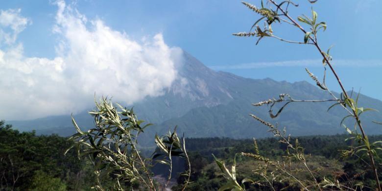 Panorama Gunung Merapi dari Bunker Kaliadem, Yogyakarta