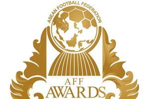 Daftar Peraih Penghargaan AFF Awards 2017, Indonesia Dapat Dua