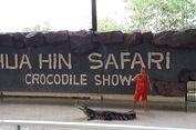 Taman Safari di Thailand yang Pas untuk Liburan Keluarga