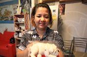 Mirip Asli, Puding Bayi Anjing Jadi Viral dan Laris Manis
