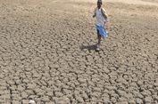 Tahun 2100, Suhu di Negara-negara Ini Akan Membunuh Manusia