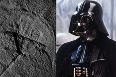 Fosil Berusia 245 Juta Tahun Ini Dibilang Mirip Darth Vader, Setuju?