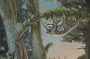 Fosil Langka Ungkap Spesies Zaman Dinosaurus yang Meluncur di Udara