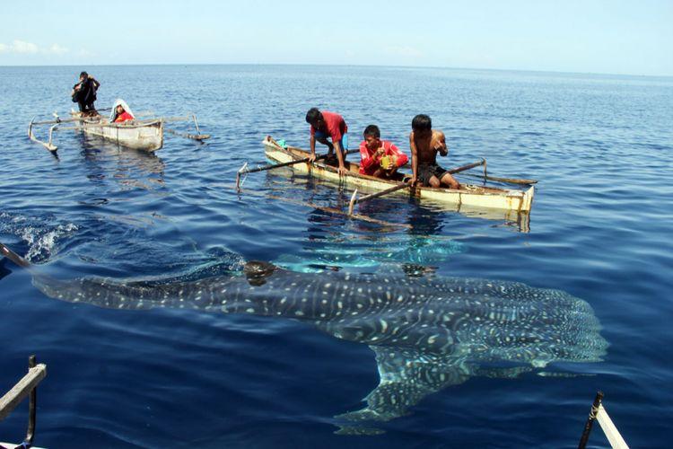 Anak-anak Botubarani, Bone Bolango bermain dengan hiu paus (whale shark) di belakang kampung mereka. Sudah beberapa bulan ini raksasa laut ini tidak muncul.
