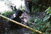 Petani Aceh Utara Temukan Bom Sepanjang 30 Sentimeter