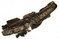 """Tulisan """"Allah"""" dan """"Ali"""" Ditemukan pada Pakaian Pemakaman Viking"""