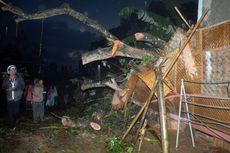 Pohon Mahoni Tumbang, Tiga Rumah Rusak, Satu Remaja Tewas
