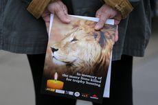 Selain Gajah, Trump Izinkan Pemburu Bawa Pulang Singa dari Afrika