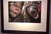 Dinilai Rasial, Lusinan Foto Orang Afrika dengan Binatang Diturunkan