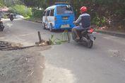 Di Nunukan, Jalan Berlubang Ditanami Pohon Kelapa