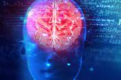 Benarkah Manusia Hanya Memakai 10 Persen dari Kemampuan Otaknya?
