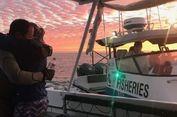 Penyelam Ini Selamat dari Kejaran Ikan Hiu setelah Berenang 7,5 Km