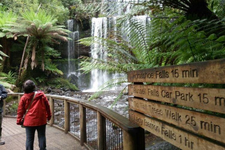Air terjun Russell Falls salah satu yang dicari pengunjung taman nasional Mount Field, Tasmania.
