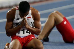 Atlet Penyandang Disabilitas, Oase bagi Prestasi Olahraga Nasional...