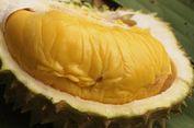 Durian Jadi Buah Idam   an di China