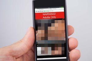 Terungkapnya Pemeran Video Porno yang Viral di Media Sosial