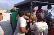 Seorang Petani Ditemukan Tewas di Tengah Jalan Tol Ngawi-Kertosono