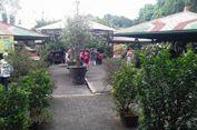 Siapa Sangka, Ini Dia Asal-usul Taman Topi di Bogor