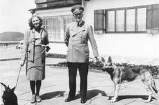 Hari Ini dalam Sejarah: Adolf Hitler Mengakui Kekalahan Jerman