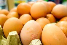 Telur Tercemar Fipronil di Eropa Kini Ditemukan di Hongkong