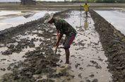 Tertarik Harga Tinggi, Petambak Ikan Beralih Jadi Petani Garam