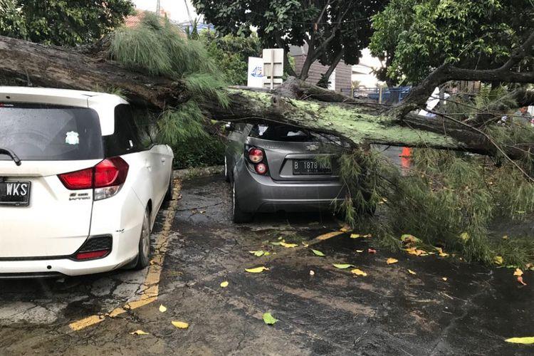 Cuaca buruk menyebabkan pohon tumbang dan menimpa mobil.
