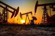 OPEC Pangkas Produksi, Harga Minyak Bakal Melonjak