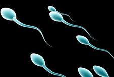 Ingin Punya Sperma Berkualitas? Tidurlah 8 Jam Penuh