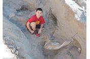 Gara-gara Tersandung, Bocah Ini Temukan Fosil Jutaan Tahun