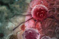 Virus Zika Bisa jadi Kunci Pengobatan Kanker Otak