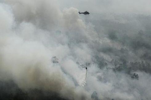 Enam Provinsi Tetapkan Status Darurat Kebakaran Hutan dan Lahan