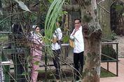 Ketika Pengunjung Ragunan Soraki Pengawal Jokowi...