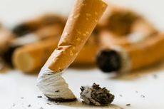 Akankah Semua Perokok Terkena Kanker Paru? Dokter Menjawab