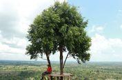 Bukit Gebang, Tempat Foto 'Instagramable' di Bangka Selatan