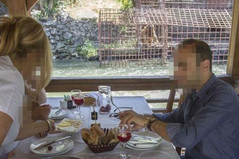 Jadi Hiburan di Restoran, Dua Beruang Diselamatkan Petugas