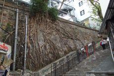 6 Tempat Instagramable untuk Wisatawan Milenial di Hongkong
