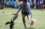 Barapan Ayam, Upaya Menjaga Kebersamaan