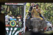 Jangan Ditiru! Turis Indonesia Beri Minuman Beralkohol pada Hewan di Taman Safari