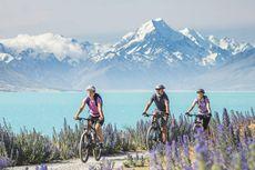 5 Aktivitas Seru Saat Musim Semi di Selandia Baru