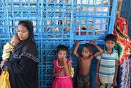 Terkait Krisis Rohingya, Pejabat AS Dilarang Berkunjung ke Rakhine