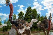 Ilmuwan Terkejut, Ada Dinosaurus yang Menyerupai Kasuari