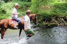 Sensasi Berkuda di Sungai dan Jelajah Alam