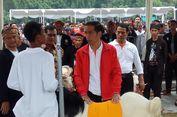 Jokowi Ingin Para Peternak Bikin 'Korporasi Peternakan'